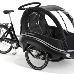 luxe-winther-beebike-